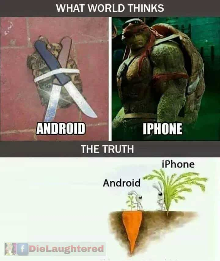 Apple suger!